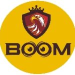 BOOM BUSINESS CONSULTING SOLUTIONS